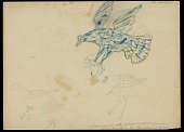 view Blue Bird (Eagle ?) Attacking a Rabbit; Three Other Birds Drawing digital asset: Blue Bird (Eagle ?) Attacking a Rabbit; Three Other Birds Drawing