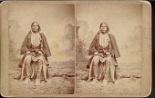 "view ""Big Bow, Chief of Kiowa"" 1880s digital asset number 1"