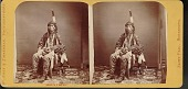 "view ""Sioux chief"" digital asset number 1"