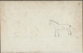 view Anonymous unfinished drawing, probably Lakota or Cheyenne, of horse digital asset: Anonymous unfinished drawing, probably Lakota or Cheyenne, of horse
