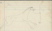 view Anonymous Cheyenne drawing of horse tied to tree digital asset: Anonymous Cheyenne drawing of horse tied to tree
