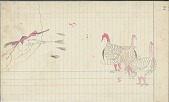 view Anonymous Cheyenne drawing of hunter shooting at three turkeys digital asset: Anonymous Cheyenne drawing of hunter shooting at three turkeys