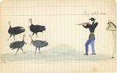 view Tichkematse drawing of Big White Man, Indian scout, shooting four turkeys digital asset: Tichkematse drawing of Big White Man, Indian scout, shooting four turkeys