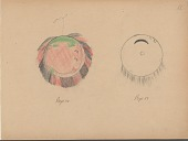 view Carl Sweezy drawing of two shields digital asset: Carl Sweezy drawing of two shields