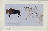 view Anonymous Assiniboine drawing of an Assiniboine running a buffalo digital asset: Anonymous Assiniboine drawing of an Assiniboine running a buffalo