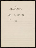 view Pencil drawing by George Bushotter with caption 49 Illustration 1887 digital asset number 1