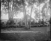 view Group sitting at picnic tables under trees next to tents digital asset: Group sitting at picnic tables under trees next to tents