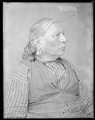 view Chief Tawakoni Jim, side view. Oklahoma. Anadarko Wichita. Former U. S. Government scout. 1904 digital asset number 1