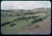 view Field and path, circa 1956 digital asset number 1