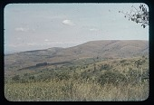 view Land settlement pattern in fertile valley, sorghum field in foreground, circa 1956 digital asset number 1