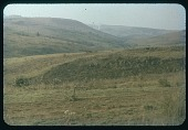 view Fire-breaks: (burned area), circa 1956 digital asset number 1