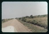 view Albert National Park - Road, circa 1957 digital asset number 1