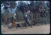 view Congolese women with tump-line burdens, circa 1957 digital asset number 1