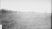 view [Newat's Camp on the North Canadian] 1893 digital asset number 1