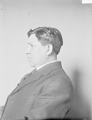 view Portrait (Profile) of Johnson E. Tiger (Mixed Blood) 05 MAY 1908 digital asset number 1
