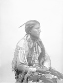 view Portrait (Profile) of Apiatan (Wooden Lance) in Native Dress with Benjamin Harrison Peace Medal and Breastplate 1894 digital asset number 1