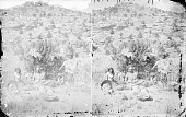 view Group of Four in Native Dress Living Under Bush; Baskets, Clay Pots, Mano, and Metate Nearby 1873 digital asset number 1