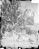 view Group of Four in Native Dress Around Kettle On Tripod, Baskets Nearby 1873 digital asset number 1