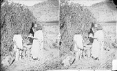 view Old Man and Woman Presenting Grandson with Headdress, All in Native Dress; Brush Shelter Nearby 1873 digital asset number 1