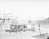 view Two Men in Partial Native Dress Near Ox Cart and Corrals 1880 digital asset number 1