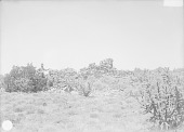 view Man Near Ruins 1899 digital asset number 1