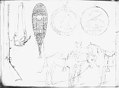 view Drawings by R. F. Kurz Of 1851 digital asset number 1