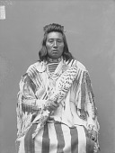 view Portrait (Front) of Harlish Washshomake or Chief Wolf Necklace in Native Dress with Ornaments and Holding Fan 1890 digital asset number 1