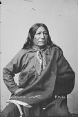 view Portrait of Brule Dakota man, Sinte-galeshka or Spotted Tail, a prominent chief 1877 digital asset number 1