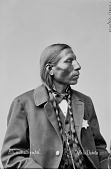 view Portrait (Profile) of Mi-Wa-Kan Yu-Ha-La, Called Sword, Captain of Native Police and Judge of Native Court 1875 digital asset number 1