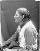 view Portrait (Profile) of Kangi-Ho-Waste or Khan-Ghi-Ho-Asht (Good Voiced Crow) in Partial Native Dress 1907 digital asset number 1