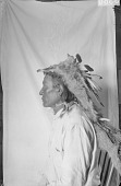 view Portrait (Profile) of Wiyaka-Wanzila (One Feather) with Headdress 1913 digital asset number 1