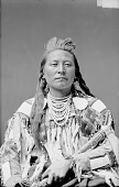 view [Portrait (Front) of Yshidiapas or Aleck-Shea-Ahoos. Best known as Plenty Coups, head chief] 1880 digital asset number 1