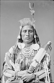 view Perits-Shinakpas or Paretche-Mark-Bosh, Called Medicine Crow, wearing regalia 1880 digital asset number 1