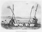 view Drawing by Karl Bodmer of Shrine Made of Human and Buffalo Skulls Arranged in Circle; Boughs Erected in Middle of Circle 1912 digital asset number 1