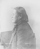 view [Portrait (Profile) of Xu-tha-xtsi or Real Eagle, called Peter Castle Bigheart] ca. 1894 digital asset number 1