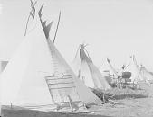 view Encampment of tepees ca 1900-1920 digital asset number 1