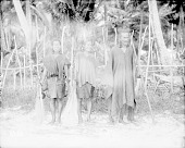 view [Two women with King of Mual District, Moen Island, Truk Islands] 1899-1900 digital asset number 1