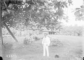 view [Man standing next to breadfruit tree, Apia village, Upolu Island, Samoa Islands] 1900 digital asset number 1