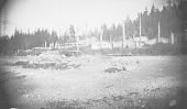 view Western End of Village Showing Wood Plank Houses, Wood Frame Houses, and Totem Poles 1885 digital asset number 1