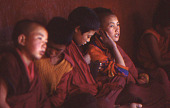 view Film Studies of Traditional Tibetan Life and Culture: Ladakh, India, 1978 7/26/1978 (4:45p.m.) digital asset number 1