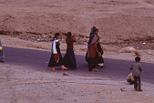view Film Studies of Traditional Tibetan Life and Culture: Ladakh, India, 1978 7/28/1978 digital asset number 1