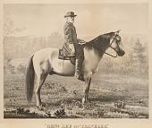 view Robert E. Lee digital asset number 1