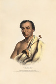 view On-ge-wae - A Chippewa Chief digital asset number 1