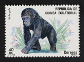 view 40b Gorilla single digital asset number 1