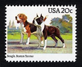 view 20c Beagle and Terrier single digital asset number 1