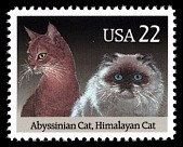 view 22c Abyssinian & Himalayan Cats single digital asset number 1