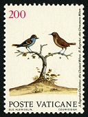 view 200 lire Crested and Common Wrens single digital asset number 1