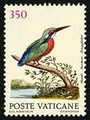 view 350 lire Kingfisher single digital asset number 1