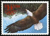view $14 Eagle single digital asset number 1