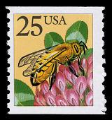 view 25c Honeybee coil single digital asset number 1